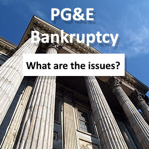 Legal Issues for PG&E's Bankruptcy with Angela Liponovich of Estriatus Law